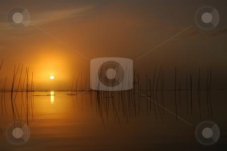Foggy Sunrise stock photo, Sun piercing through the morning fog. by Pierre Landry