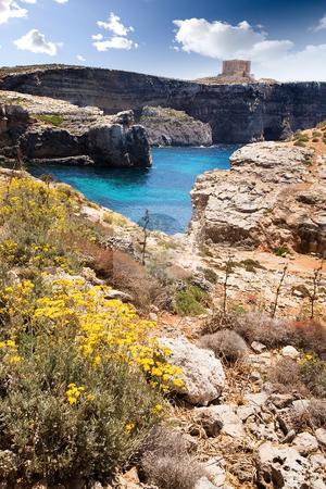 Malta Landscape stock photo, Comino island landscape with by Tyler Olson