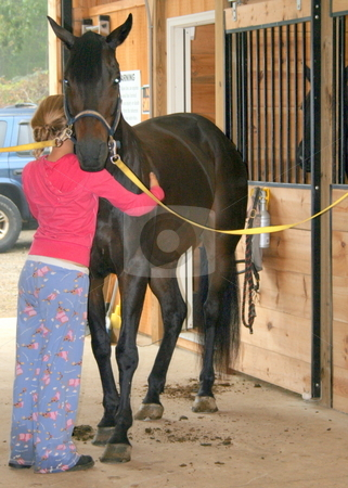 Love My Horse stock photo, Just before the horse show, a young lady hugs her horse while preparing him for show by Tom and Beth Pulsipher