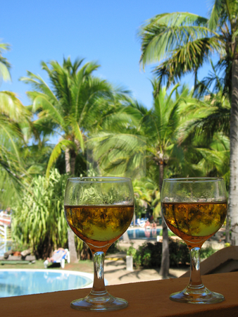 Wine glasses in a tropical environment stock photo,  by Mbudley Mbudley