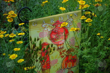 Flowers,garden,summer,   stock photo, Different shots around yard by Richard Sheehan