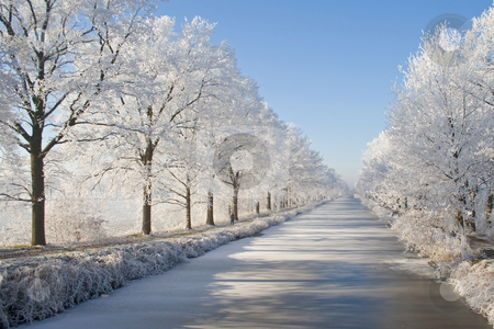 Winter Landscape stock photo, Magical winter landscape showing trees covered with snow by Inge Schepers