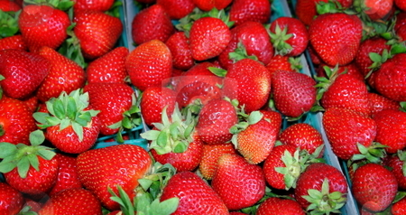Strawberries stock photo, Large collection of delicious red strawberries by Henrik Lehnerer