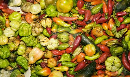 South American Peppers stock photo, Variety of red and green South American peppers by Scott Griessel