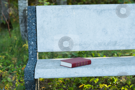 Book stock photo, A single book sitting on a park bench by Richard Nelson
