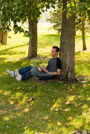 Reading In The Park stock photo, A man sitting under a tree reading in the park by Richard Nelson