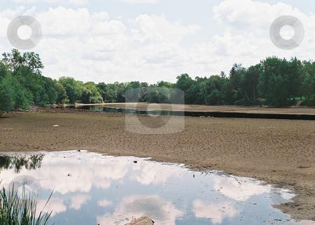 salt river project login