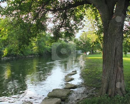 Scenic Park_Yahara River_ Madison, WI