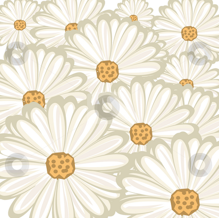 Daisy background stock photo, Layered white daisy background by Michelle Bergkamp