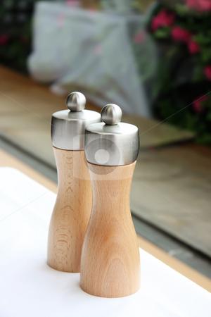 Salt and pepper shakers stock photo, Elegant modern steel and wood salt and pepper shakers by Kheng Guan Toh