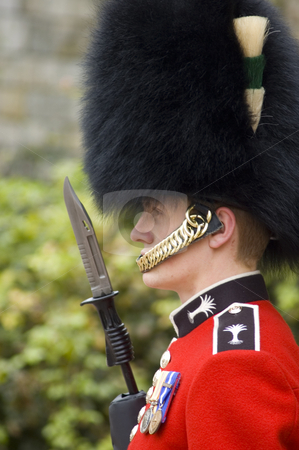 Queen Guard stock photo, Close up of a British guard (England) by Lee Torrens