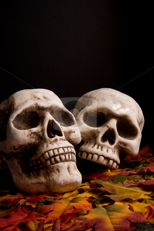 Halloween skulls stock photo,  by Jose Wilson Araujo