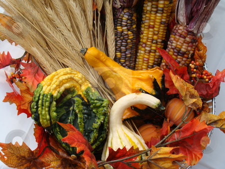 Autumn Cornucopia stock photo, Autumn Cornucopia center piece by CHERYL LAFOND