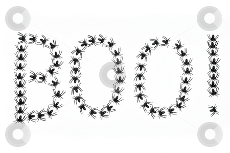 Spiders saying Boo stock photo, Black spiders write Boo on white background by Denis Radovanovic