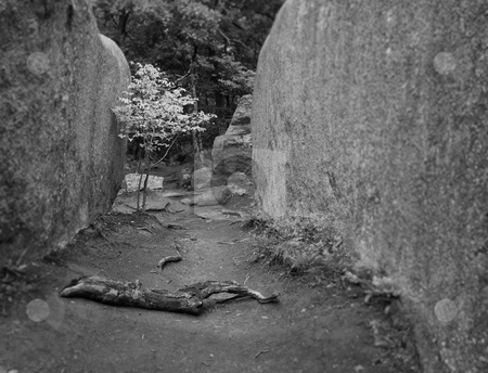 Path between the granite boulders stock photo, A black and white version of a photo of a path between two huge granite boulders by Mitch Aunger