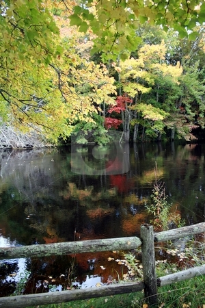 Fall Foliage Reflecting on a  Maine Stream stock photo, Autumn foliage reflecting on a rural stream in Maine by Tom and Beth Pulsipher