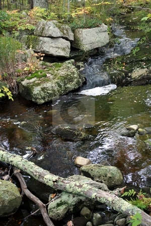 Backcountry Waterfall, Maine stock photo, A small waterfall trickles into a stream, in rural Maine by Tom and Beth Pulsipher