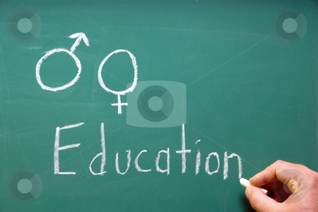 Sex Education stock photo, A chalkboard represention sex education in school. by Robert Byron
