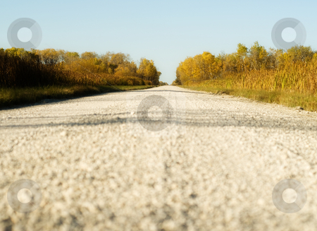 Gravel Road stock photo, Low angle view of a rural gravel road going into the distance by Richard Nelson