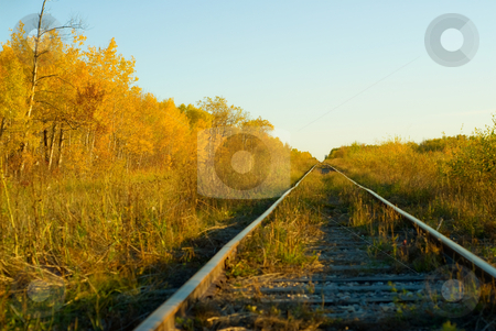 Journey stock photo, A set of railroad tracks running across the countryside by Richard Nelson