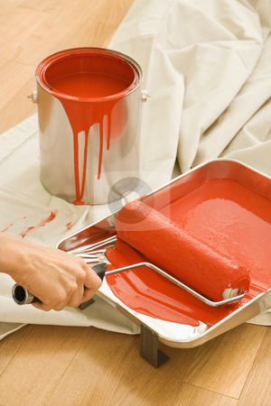 Woman using paint roller. stock photo, Hand holding paint roller in tray with painting supplies on drop cloth. by Iofoto Images