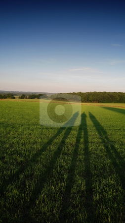 Long Shadows stock photo, The setting sun casts long shadows of three people across a green, grassy field by Martin Darley