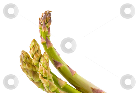 Bunch of asparagus isolated on white background stock photo, Bunch of asparagus isolated on white background by Pablo Caridad