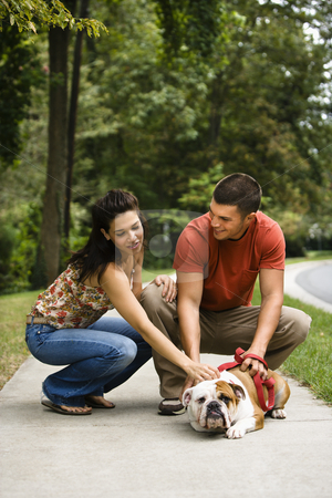 Couple petting dog. stock photo, Caucasian mid adult couple petting English Bulldog on sidewalk. by Iofoto Images