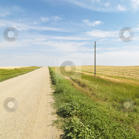 Dirt road and farmland. stock photo, Dirt road through rural farmland of the American midwest. by Iofoto Images
