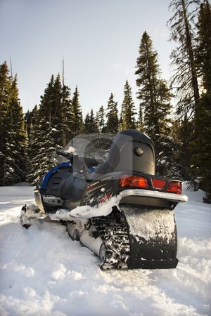 Snowmobile in forest. stock photo, Snowmobile in snow with trees in background. by Iofoto Images
