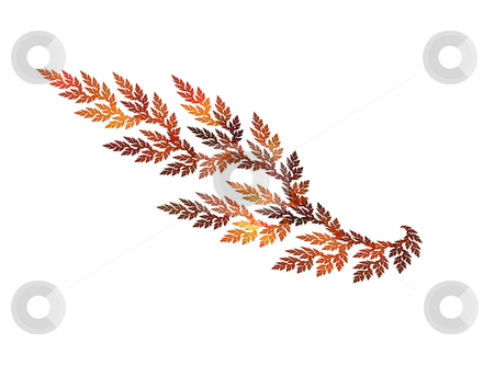 Fractal leaf stock photo, Fractal leaf colored in autumnal gamma isolated over white by Natalia Macheda