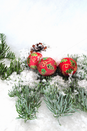 Christmas Ornaments And Tree Branch stock photo, Christmas tree decorations on a pine tree branch by Lynn Bendickson
