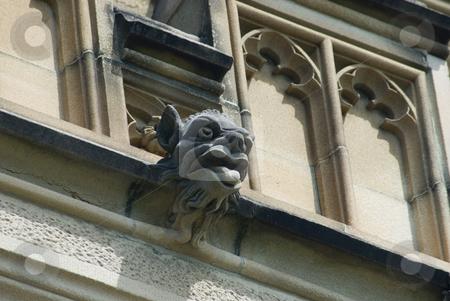 Gargoyle stock photo, Gargoyles stones on the side of the historic sydney university by Stephen Gibson