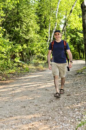Man walking on forest trail stock photo, Happy middle aged man walking on a forest trail by Elena Elisseeva