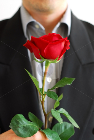 Man red rose stock photo, Man in black suit holding a red rose by Elena Elisseeva