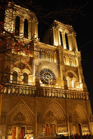 Notre Dame de Paris stock photo, Cathedral of Notre Dame de Paris at night by Elena Elisseeva
