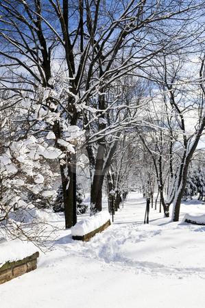 Winter park stock photo, Winter park in Toronto after heavy snowfall by Elena Elisseeva