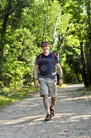 Man walking on forest trail stock photo, Happy middle aged man walking on a forest trail by Elena Elisseeva