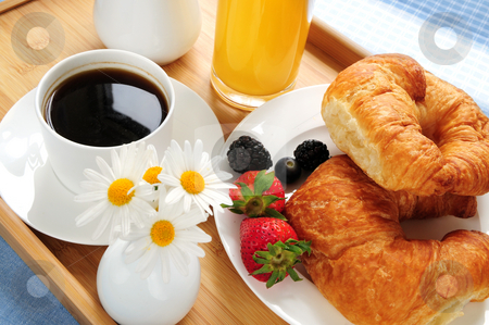 Breakfast served on a tray stock photo, Breakfast served on a tray on a sunny morning by Elena Elisseeva