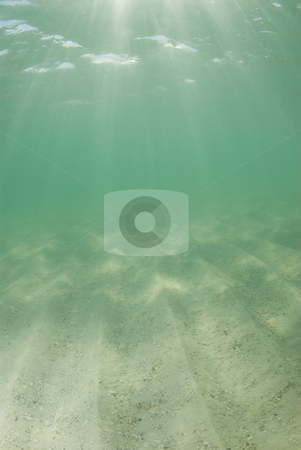 Underwater Beach Sunrays Half Rays stock photo, Underwater view of sunbeams stream through the surface of the ocean and dancing on the floor of the sea on a bright sunny day with dramatic sunrays. by A Cotton Photo