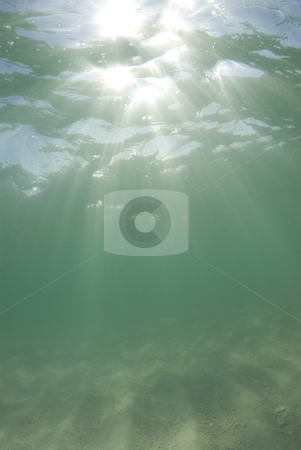 Underwater Beach Sunrays Half Sky stock photo, Underwater view of sunbeams stream through the surface of the ocean and dancing on the floor of the sea on a bright sunny day. by Amanda Cotton