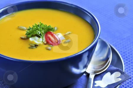 Pumpkin or squash soup stock photo, Pumpkin or squash soup in a bowl by Elena Elisseeva