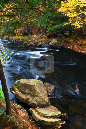 Fall river landscape stock photo, Fall river landscape with colorful autumn trees. Algonquin provincial park, Canada. by Elena Elisseeva