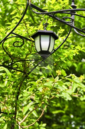 Arbor with lantern stock photo, Wrought iron arbor with lantern in lush green garden by Elena Elisseeva