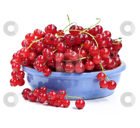 Red currants stock photo, Red currant berries isolated on white background by Elena Elisseeva