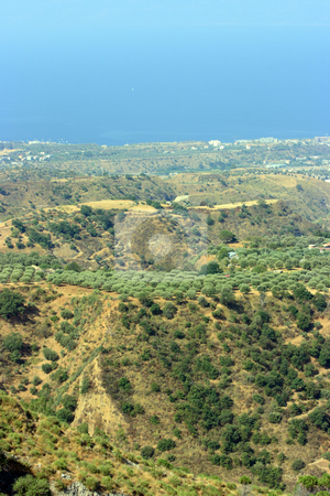 Aspromonte stock photo, View on Reggio Calabria against Messina strait from Aspromonte with typical olive-trees by Natalia Macheda