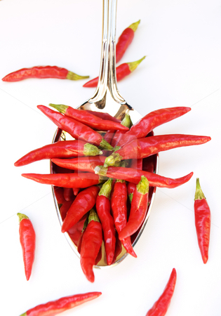 Food of devil stock photo, Red chili in the silver spoon on a clear background. by Sinisa Botas