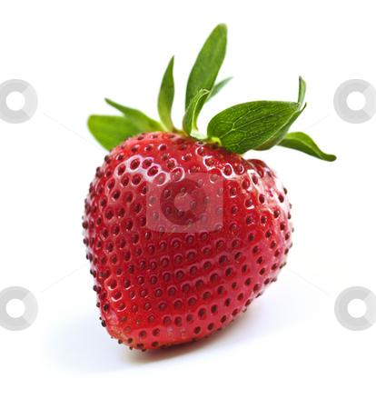 Strawberry on white background stock photo, Single fresh strawberry isolated on white background by Elena Elisseeva