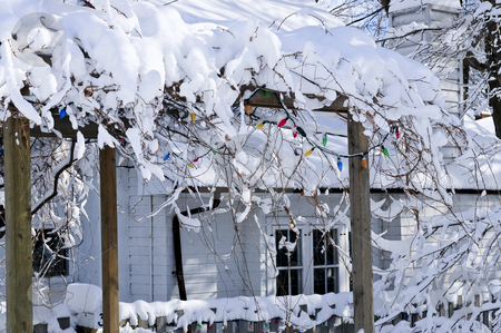 Front yard of a house in winter stock photo, Front yard of a house covered with snow in winter Toronto by Elena Elisseeva