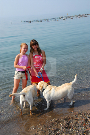 Two girls playing with dogs stock photo, Two girls playing with dogs ...